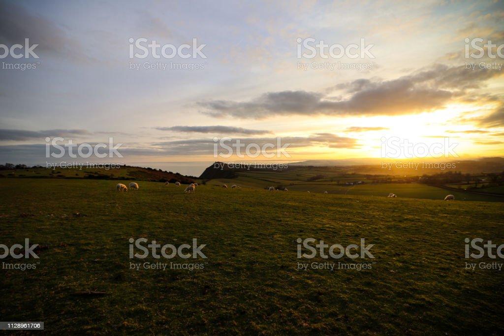 Peak Hill in Devon stock photo