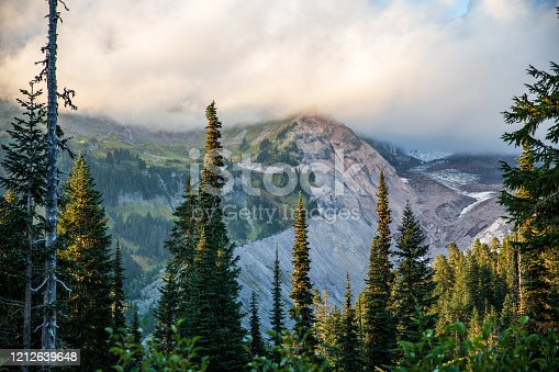 Peaks of Mount Rainier, Washington, USA covered by low clouds and surrounded by a beautiful tree line.
