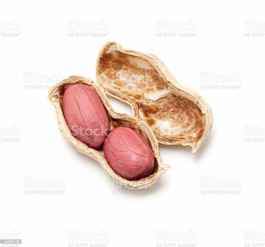 Peanut isolated on white background stock photo