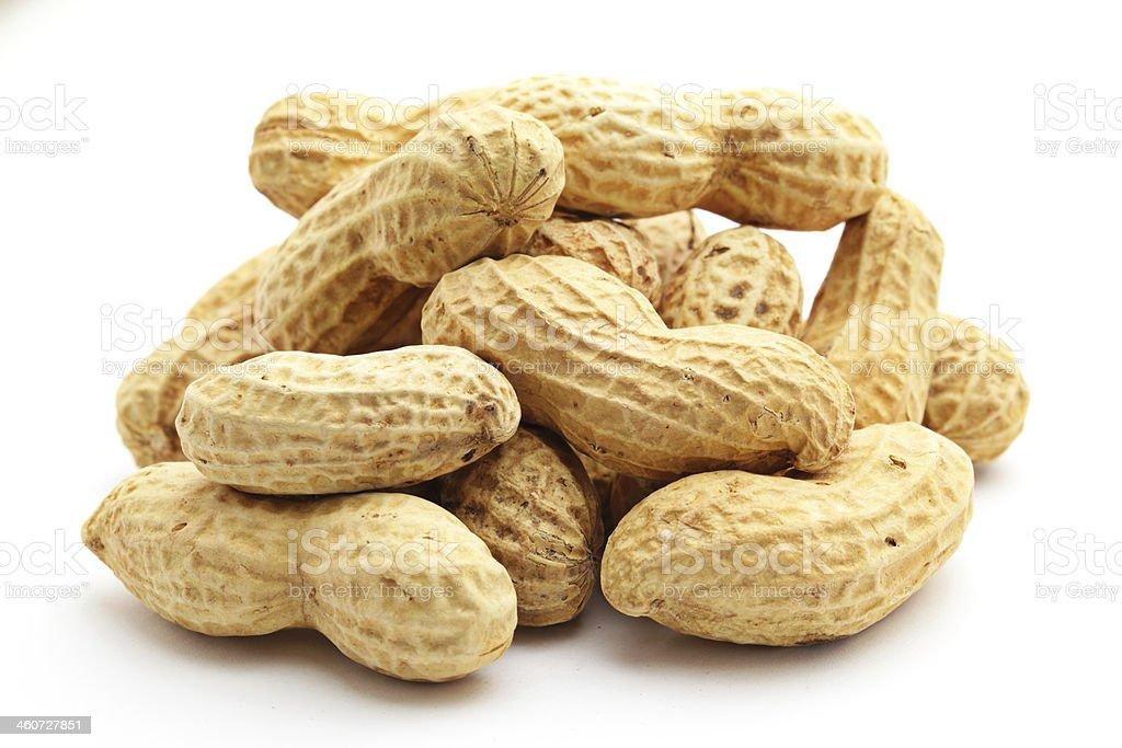 Peanut on white background stock photo