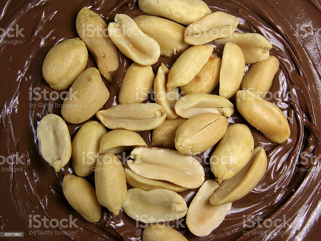 Peanuts in a circle stock photo