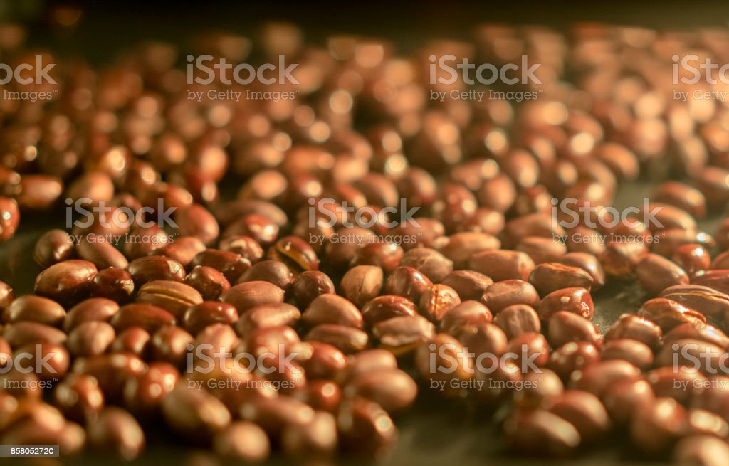 peanuts in oven stock photo