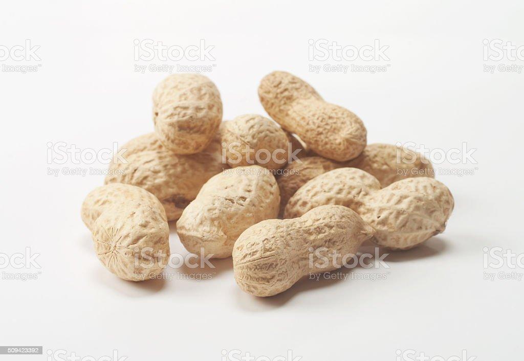 Peanuts stock photo