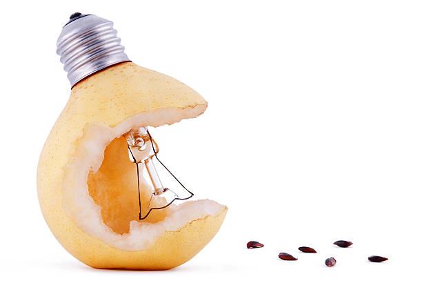 Birne Schreibtischlampe – Glühbirne und Samen – Foto