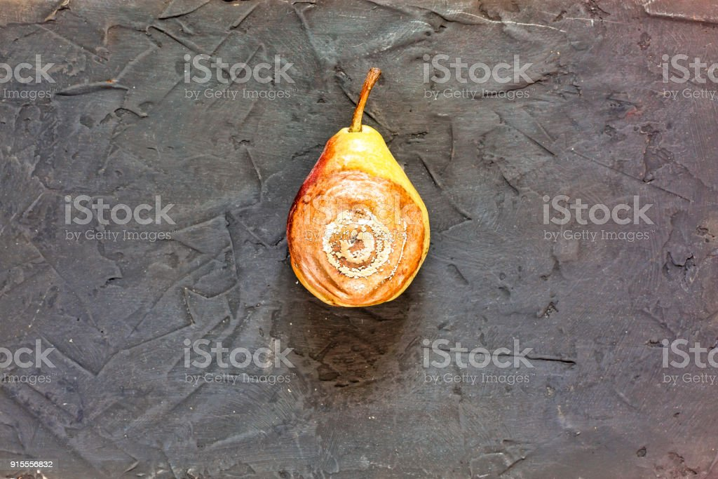 pear, rotten, mold, spoiled, colorful, decay, food, closeup, texture, vegetarian stock photo