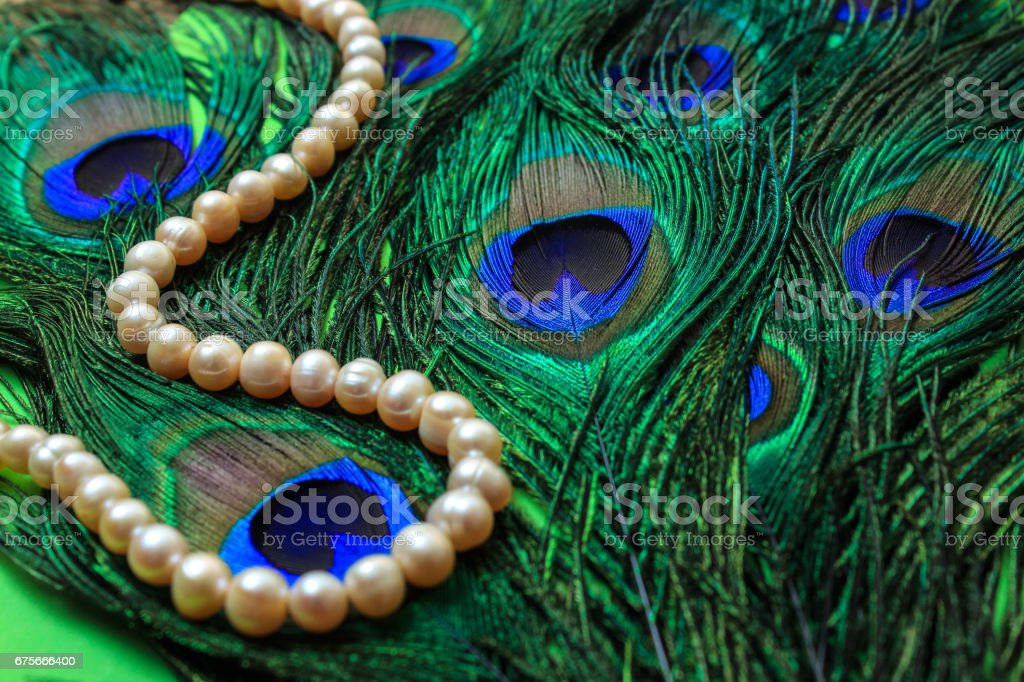 Pearl decoration on the background of feathers royalty-free stock photo