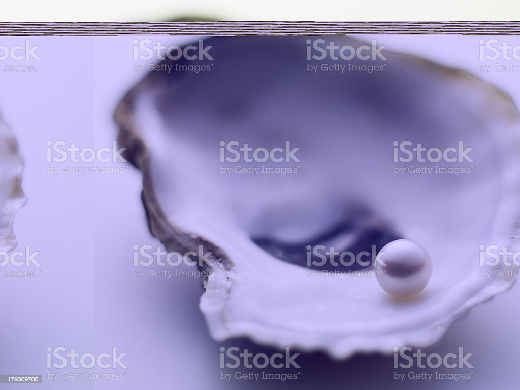 A pearl in a clam on a pastel background stock photo