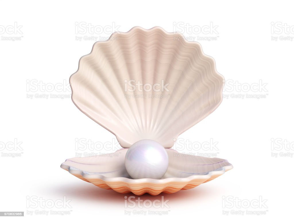 Pearl inside seashell isolated on white background stock photo