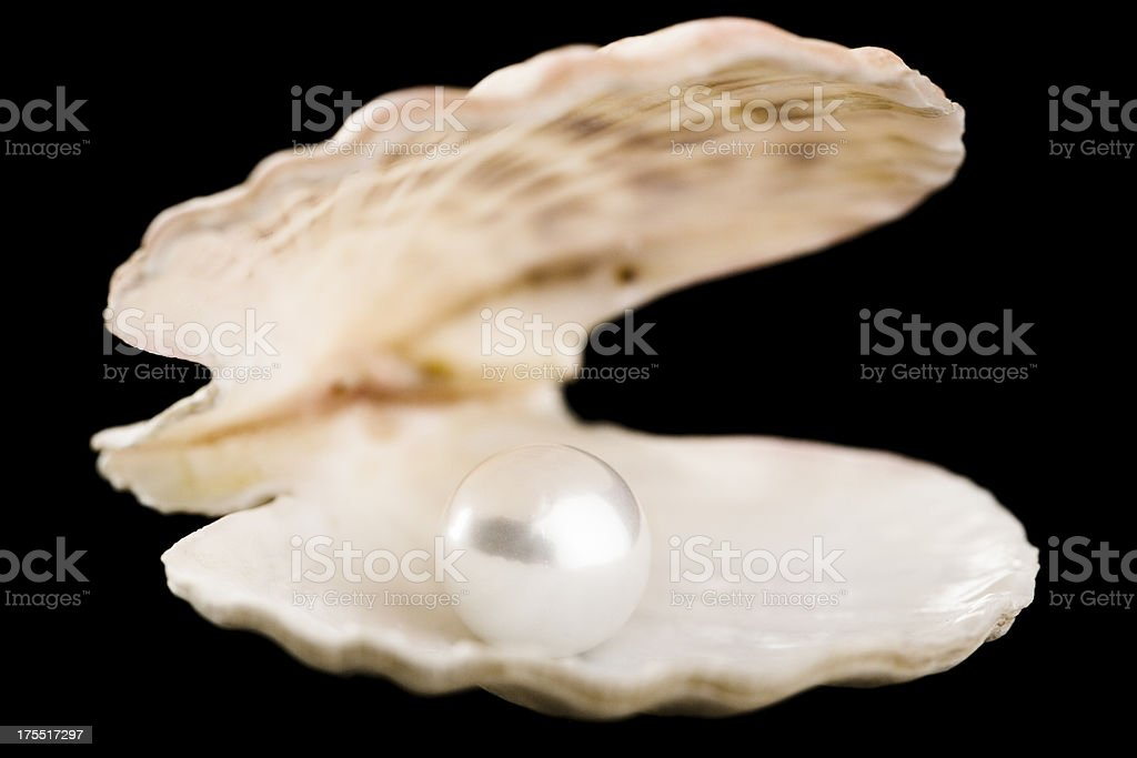 Pearl inside shell royalty-free stock photo