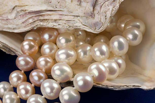 Pearl Halsketten – Foto