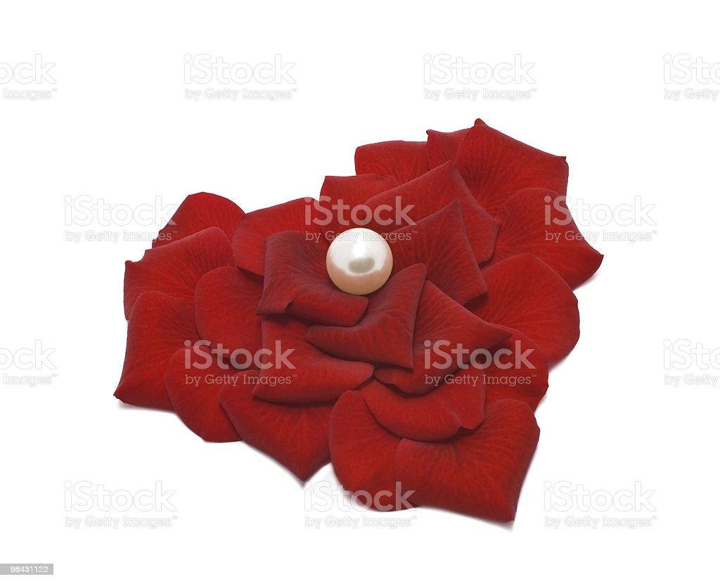 Perle nel cuore di petali di rosa foto stock royalty-free