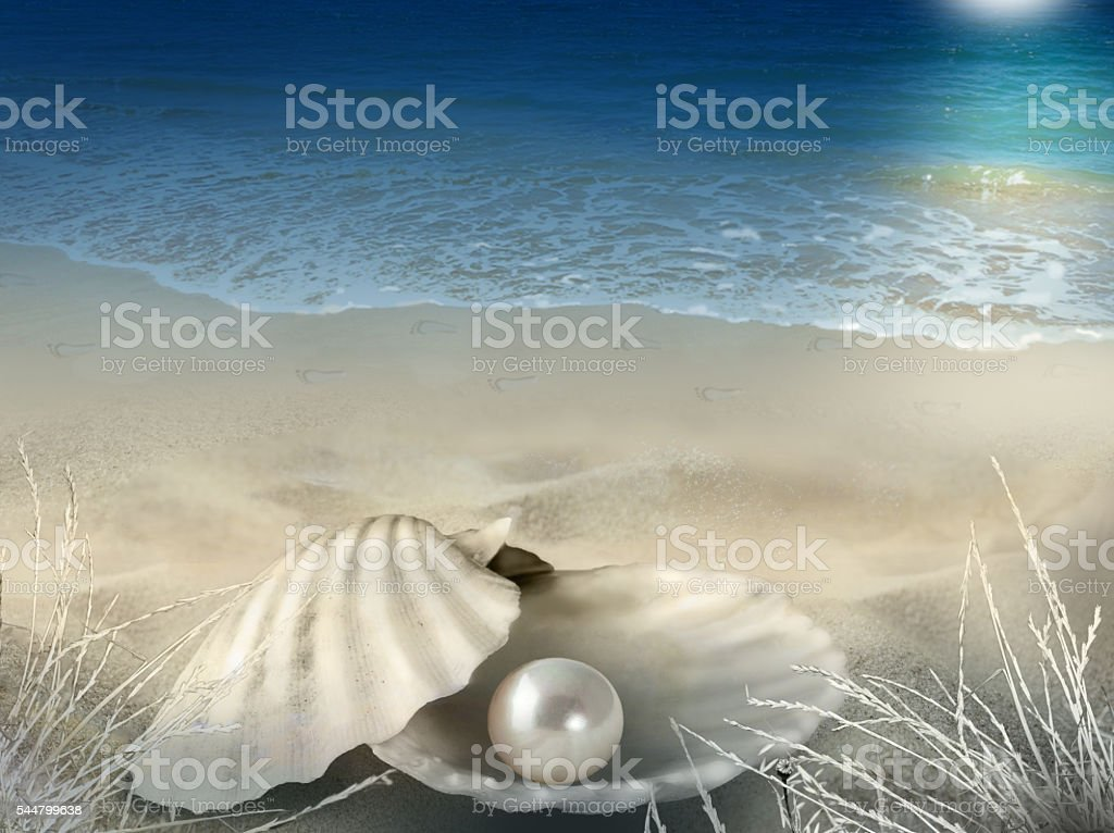 Pearly shell moonlit beach background stock photo