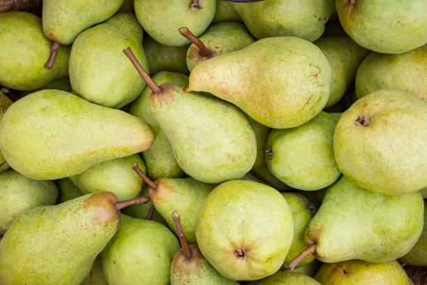 pears. - pera foto e immagini stock