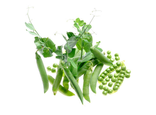 peas pods and grains - group d stock photos and pictures