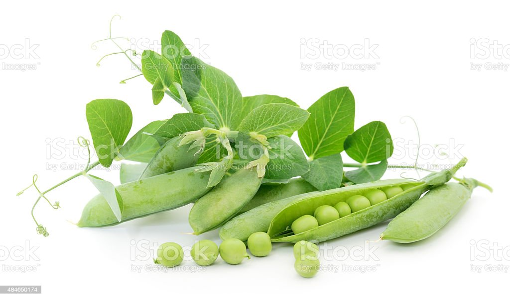 Peas with leaves. stock photo