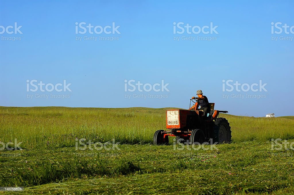 Peasant at work, harvest royalty-free stock photo