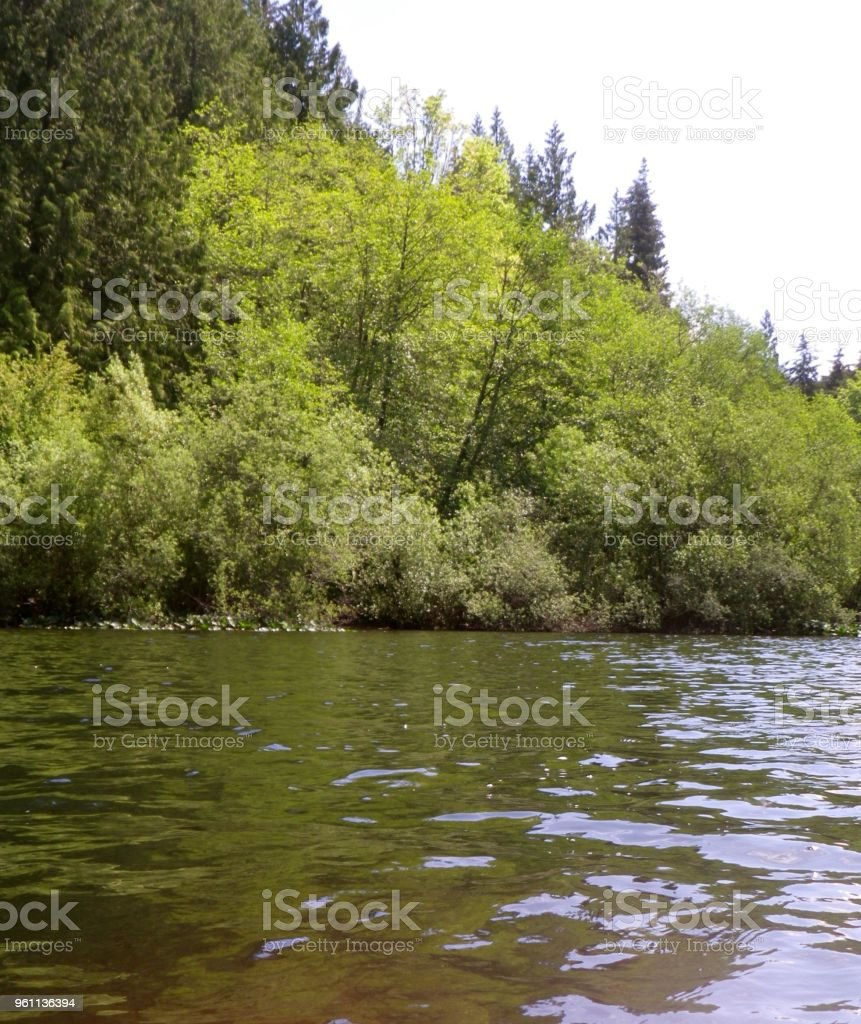 Pease Lake royalty-free stock photo