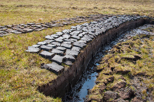 Peat (turf) cut and left to dry in Scottish Highlands stock photo