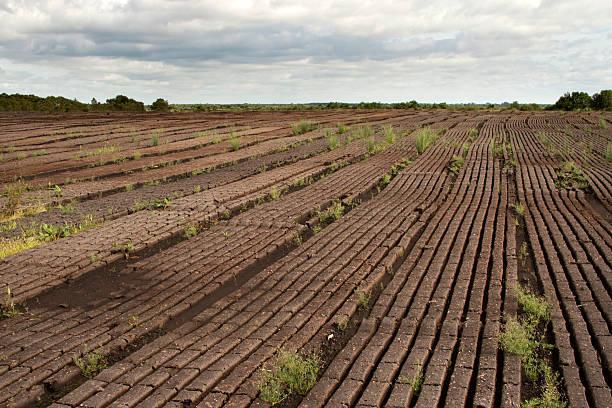 Peat fields in Ireland stock photo