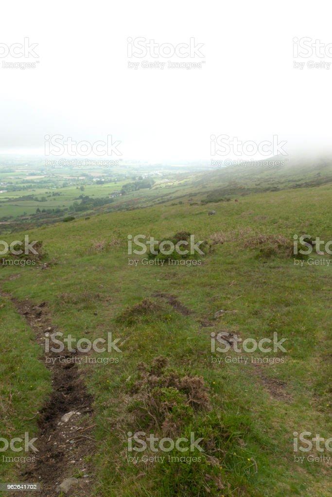 Peaty Trail stock photo