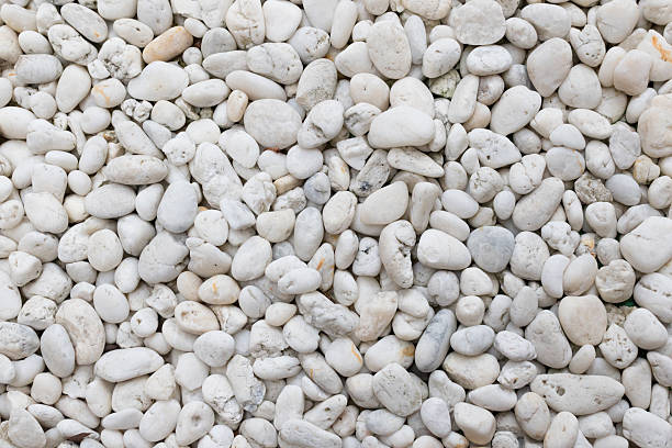 Pebble White stock photo