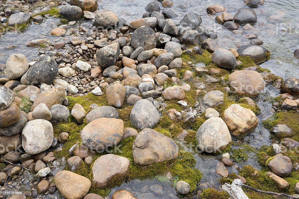 pebbles and moss on the riverbank of athasbasca river stock photo