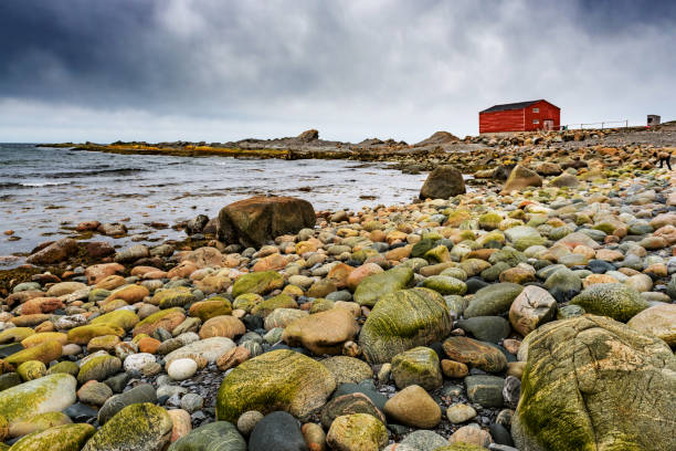 pebbles in broom point - rocky coastline stock pictures, royalty-free photos & images