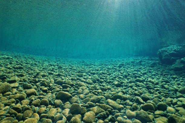 seixos debaixo d'água no rio com claras de água doce - água doce - fotografias e filmes do acervo