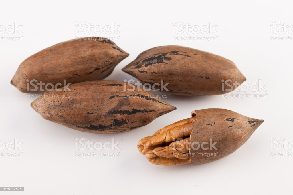 Pecan nuts isolated on white background royalty-free stock photo