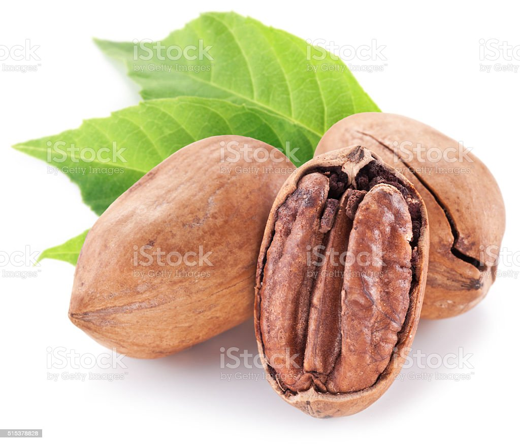 Pecan nuts with leaves. stock photo