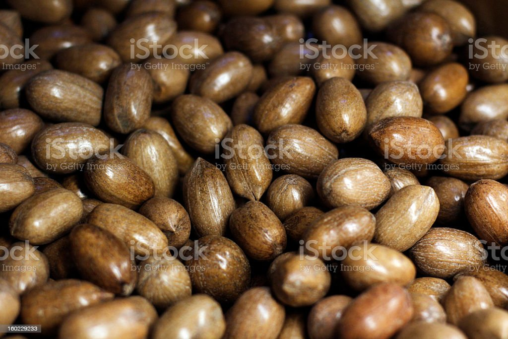 Pecans in Shells Close-up royalty-free stock photo