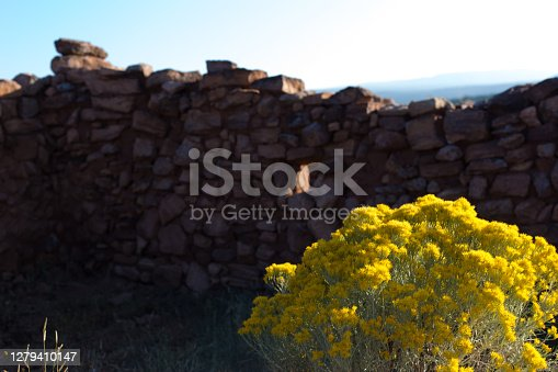 Pecos, NM: Pecos National Historical Park stone wall and chamisa plant.
