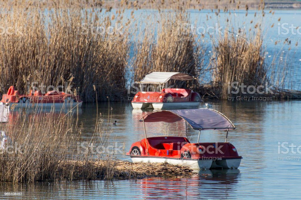 pedalo royalty-free stock photo