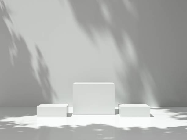 ディスプレイ用台座、デザイン用プラットフォーム、ブランク製品、壁に木の影のある空の部屋。3D レンダリング。 ストックフォト