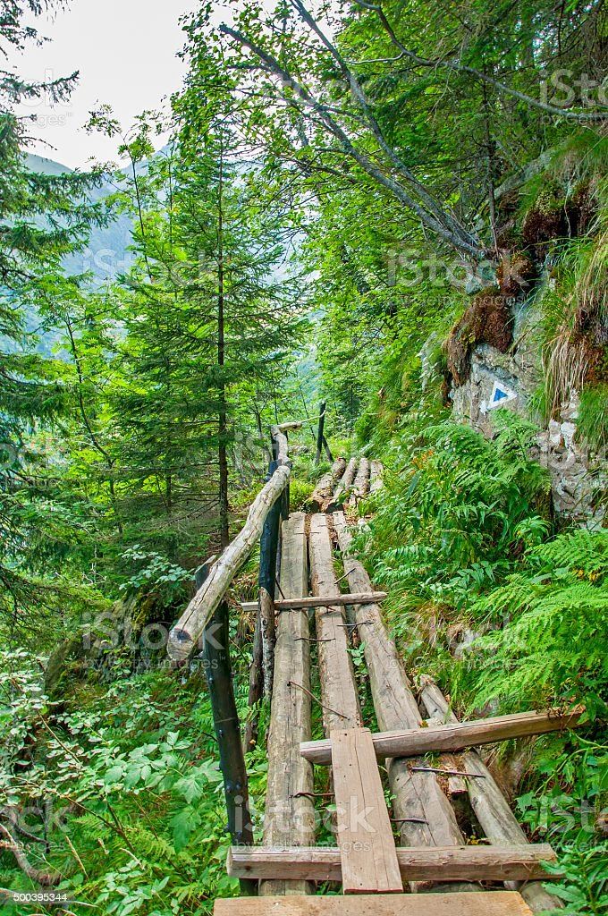 Pedestrian bridge in Carpathians mountains stock photo