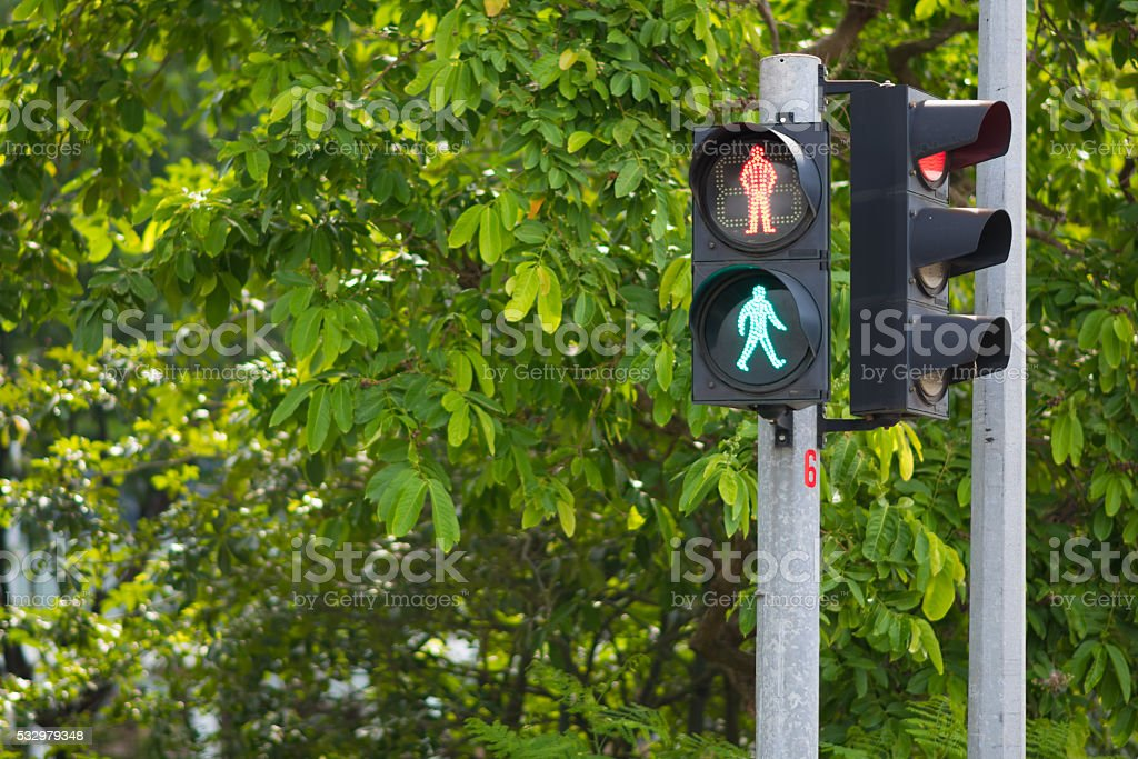 Pedestrian Crossing with Both Walk and Don't Walk Signal stock photo