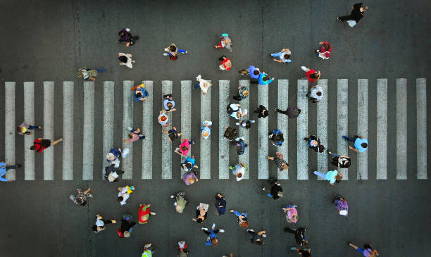 pedestrian crowd crossing crosswalk, top view. - people imagens e fotografias de stock