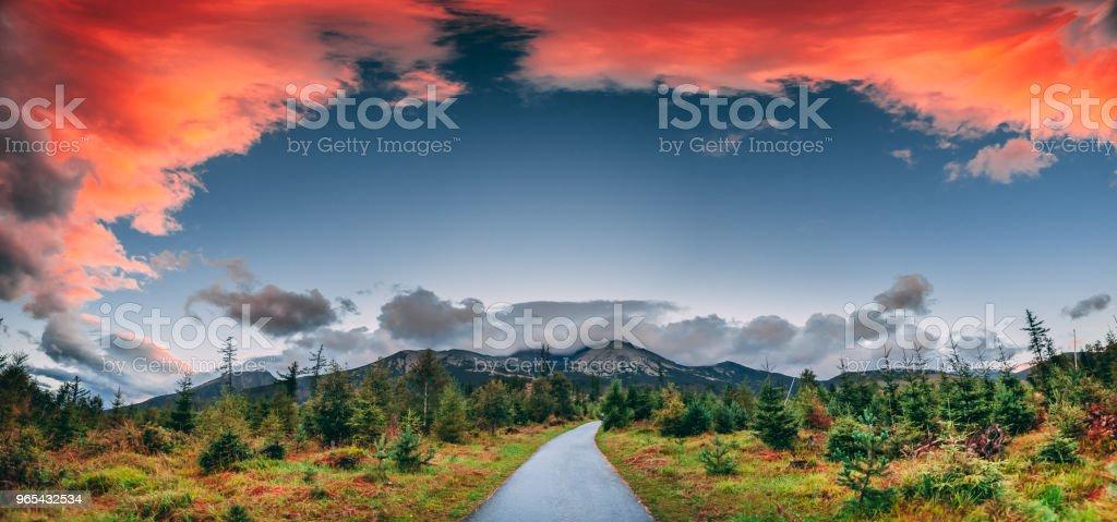 Pedestrian road in the green valley. Tatras zbiór zdjęć royalty-free