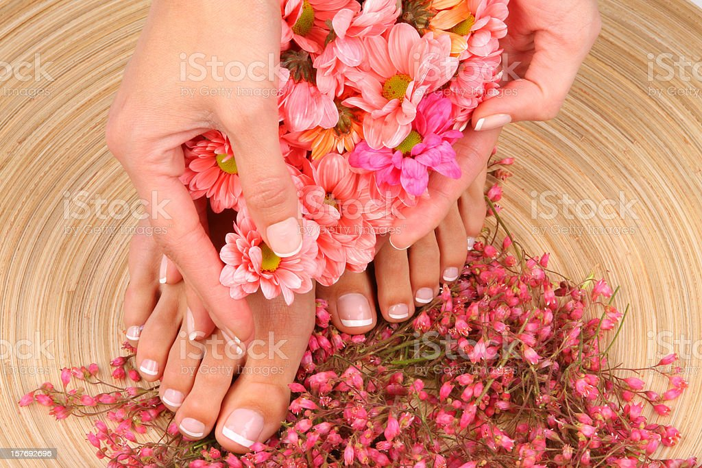 Pedicured feet with flowers stock photo