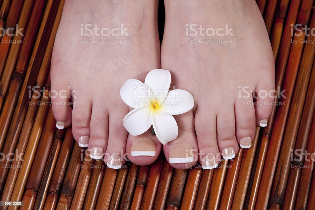 Pedicured female feet royalty-free stock photo