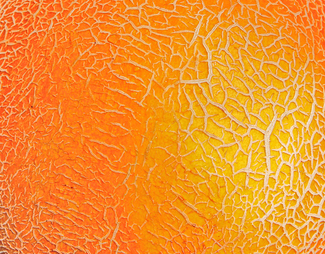 Peel Melon Background