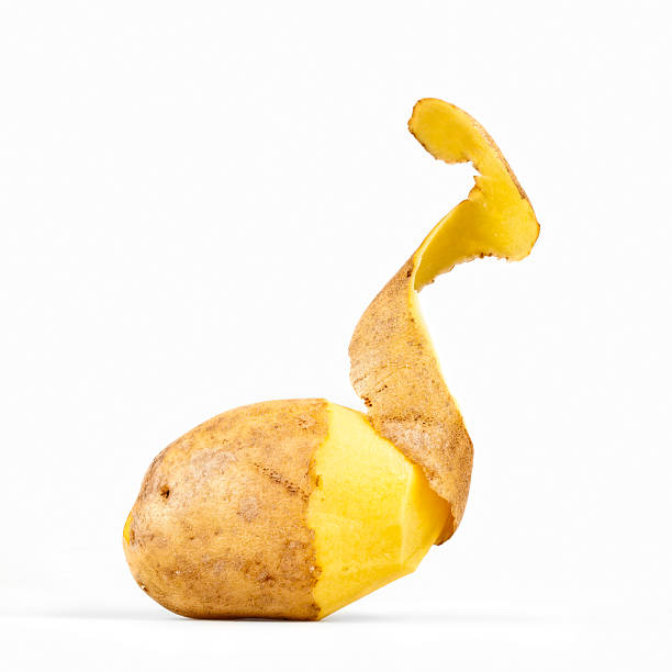 Peeled Potato stock photo