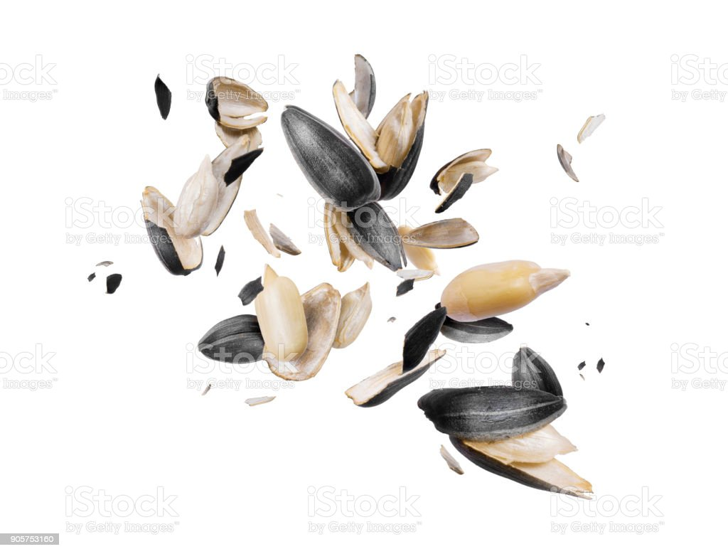 Peeled sunflower seeds are frozen in the air on white background stock photo