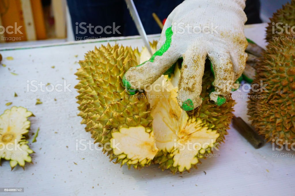 Peeling Durian by chef's hands at Fruit vendor shop stock photo