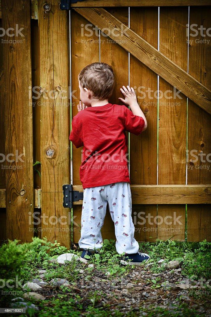 Peeping Toddler stock photo