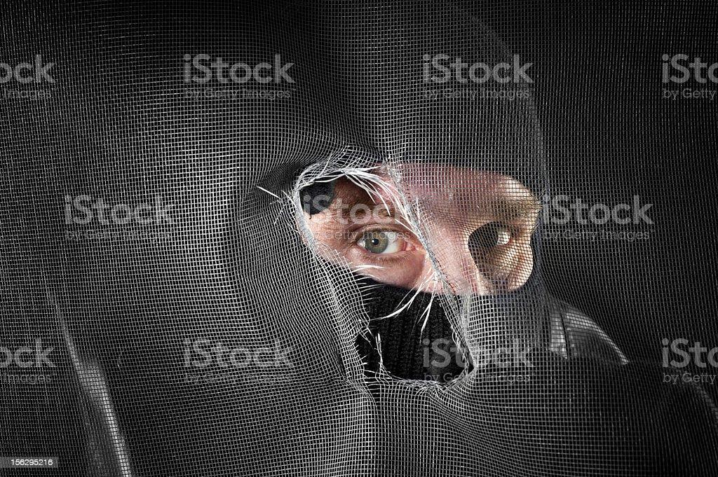 Peeping tom royalty-free stock photo