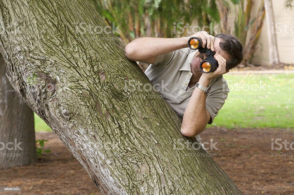 Peeping Tom royalty-free stock photo