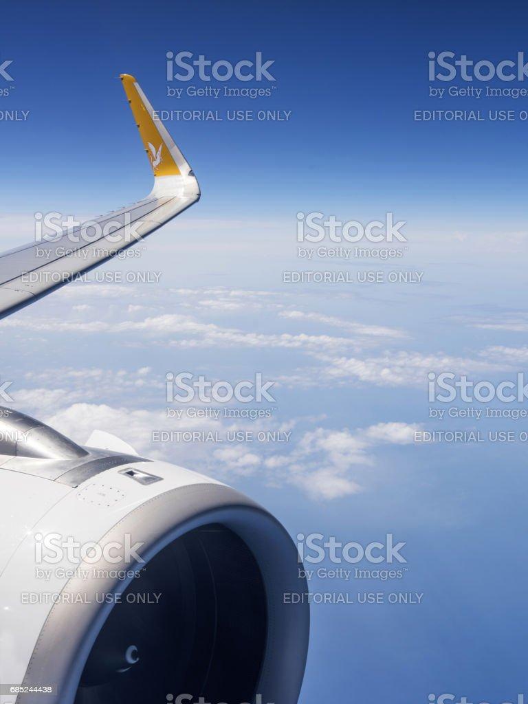 Pegasus Airlines en el aire - foto de stock