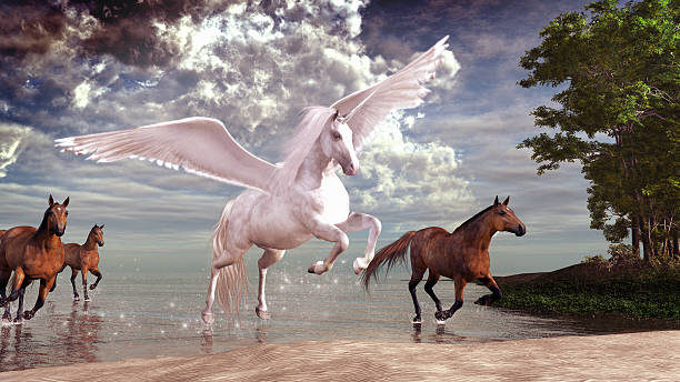 pegasus and horses - pegasus stock photos and pictures