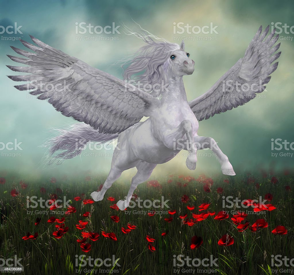 Pegasus and Red Poppies stock photo